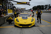 October 1- 3, 2015: Road Atlanta, Petit Le Mans 2015 - Oliver Gavin, Tommy Milner, Corvette Racing C7.R GTLM\