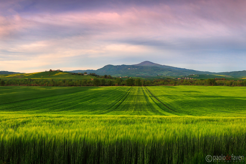 A glorious sunrise over the crop fields of the Orcia Valley, and the beautiful cone of the mount Amiata, the largest and highest quiescient volcano of Italy. Taken at dawn in the fields between Pienza and San Quirico d'Orcia, on a windy morning at the end of April.