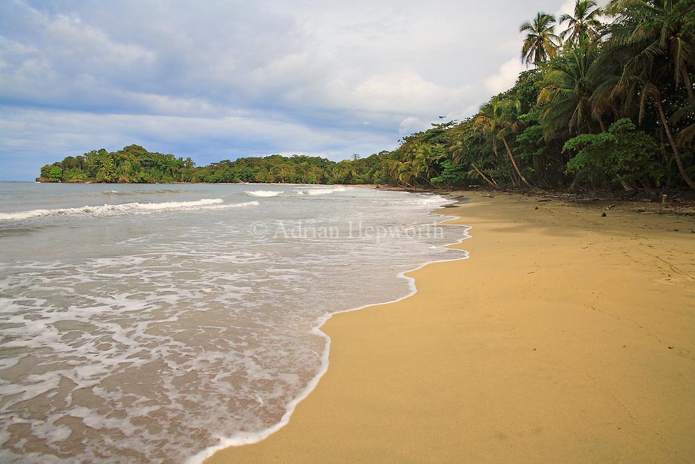 Punta Uva, Caribbean coast, Costa Rica.