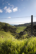 looking down through the farm fence to the rural scene below in the volcanic crater surrounded by green hills and fields with a distant view of the ocean at Awhitu, Auckland Region, New Zealand