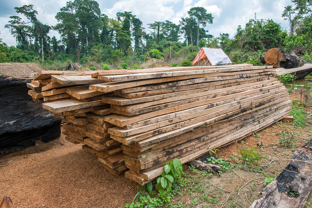 Stacked wood in Ganta, Liberia