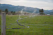 Sprinklers watering a field on May 2, 2014, next to the recreation area at Fort Missoula where Diren Dede, a German exchange student, played soccer and where a candlelight vigil was held for him.