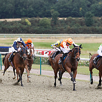 Lingfield 11th August