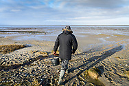 Iver Gram hunts for fresh oysters in the Wadden Sea on Denmark's south west coast. Iver runs a nature tour company called Oyster Safari. Commissioned by National Geographic Traveller.