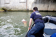 Paris, France. 7 Mai 2009..Brigade Fluviale de Paris..16h21 Sauvetage d'une femme suite a une tentative de suicide..Paris, France. May 7th 2009..Paris fluvial squad..4:21pm Salvage of a woman following a suicide.