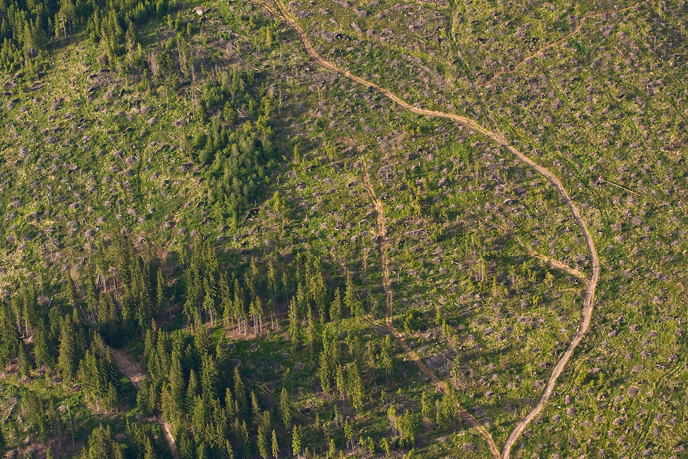 Aerial view of clear cuts in spruce forest at the foothills of the High Tatras, Slovakia. June 2009. Mission: Ticha
