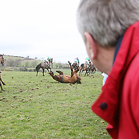 Punters watch a faller in the fifith at the Killaloe Point to Point on Sunday.<br /><br /><br /><br />Photograph by Yvonne Vaughan.