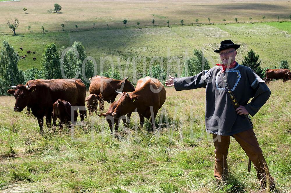 Brockenbauer Uwe Thielecke in Tracht, Rinderherde Rotes Höhenvieh, Tanne, Harz, Sachsen-Anhalt, Deutschland   farmer in traditional costume, cattle Rotes Hoehenvieh, Tanne, Harz, Saxony-Anhalt, Germany