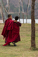 Young monks walking at the Chimi L'hakhang Temple, near Sopsokha Village, Punakha District, Bhutan