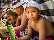 22 JULY 2016 - TENGANAN DUAH TUKAD, BALI, INDONESIA:  Children participating in the pandanus fights wait to fight in the Tenganan Duah Tukad village on Bali. The ritual Pandanus fights are dedicated to Hindu Lord Indra. Men engage in ritual combat with spiky pandanus leaves and rattan shields. They usually end up leaving bloody scratches on the combatants' backs. The young girls from the community wear their best outfits to watch the fights. The fights have been traced to traditional Balinese beliefs from the 14th century CE. The fights are annual events in the Balinese year, which is 210 days long, or about every seven months in the Gregorian calendar.   PHOTO BY JACK KURTZ