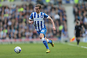 Brighton striker (on loan from Manchester United), James Wilson (21) during the Sky Bet Championship match between Brighton and Hove Albion and Burnley at the American Express Community Stadium, Brighton and Hove, England on 2 April 2016.
