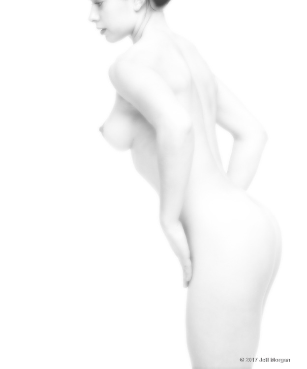 White on White: A collection of high key Fine Art Nude photographs by Jeff Morgan.