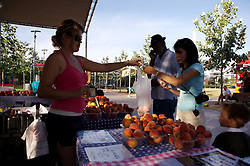 Stock photo of a woman buying peaches at the organic market in the park