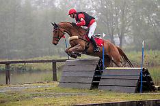 Paarden Minderhout 2018