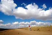 Israel, Negev Desert, Bedouin boy rides a horse