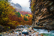 Wild river in a mountain gorge