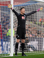 Football - 2016 / 2017 Premier League - Crystal Palace vs. Chelsea<br /> <br /> Wayne Hennessey of Crystal Palace at Selhurst Park.<br /> <br /> COLORSPORT/ANDREW COWIE