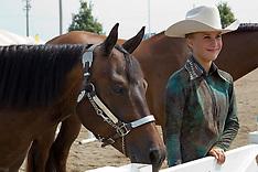 2014 McLean County Fair photos