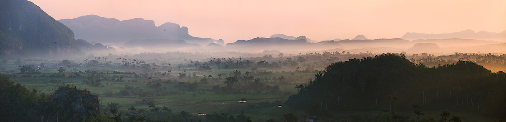 Limestone hill, farming land and palm tree forest in morning mist, Vinales Valley, UNESCO World Heritage site, Cuba