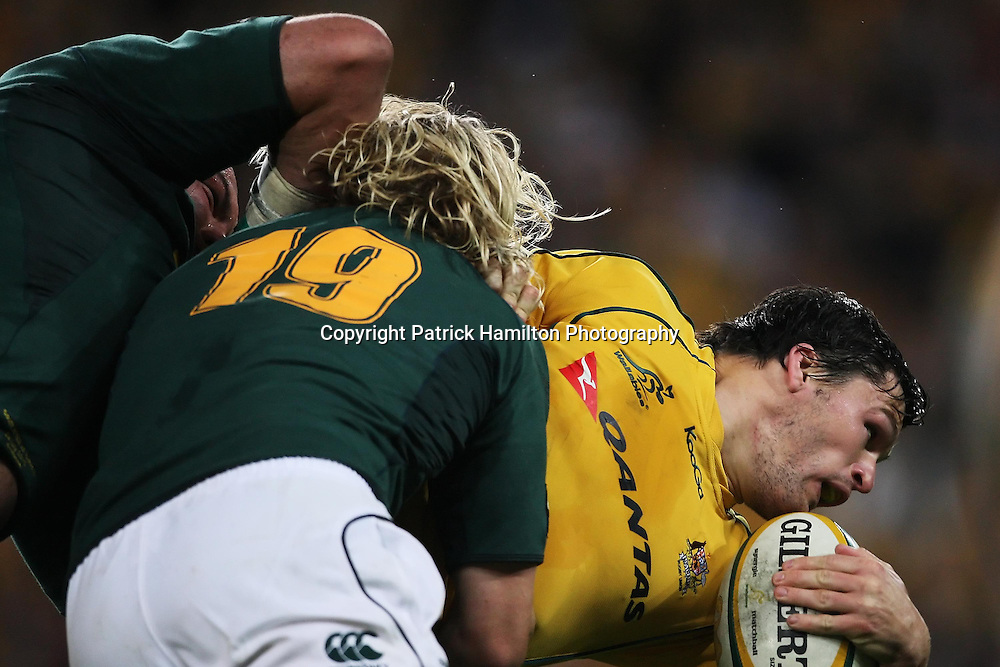 Adam Ashley Cooper is tackled by Dewald Potgieter (r) & John Smit (l) during the Tri-Nations rugby Test at Suncorp Stadium in Brisbane,  July 24, 2010.The Wallabies again ran the world champion Springboks into submission to win the second Tri-nations rugby Test 30-13 .