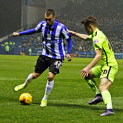 Sheffield Wednesday v Brighton | Championship | 3 November 2015