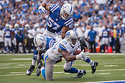 September 11, 2016: Detroit Lions running back Theo Riddick (25) dives for the goal line during the week 1 NFL game between the Detroit Lions and Indianapolis Colts at Lucas Oil Stadium in Indianapolis, IN.  (Photo by Zach Bolinger/Icon Sportswire)