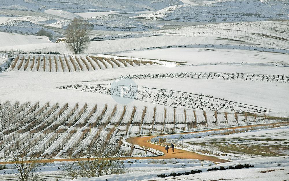 Entorno Santo Domingo de la Calzada. La Rioja.  ©Daniel Acevedo / PILAR REVILLA