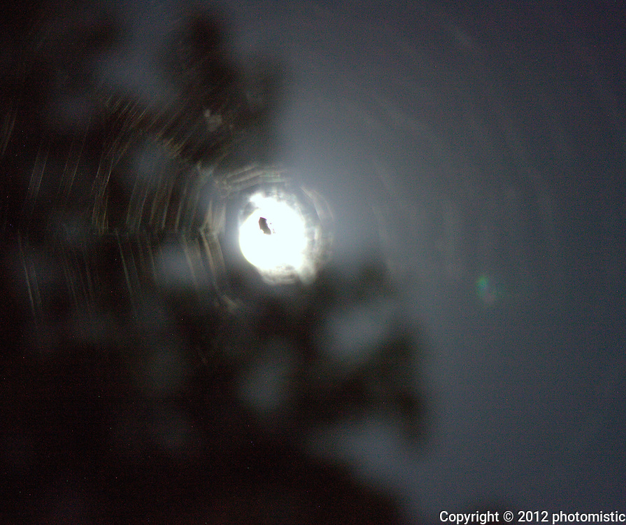 spider web around the moon