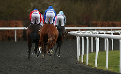 General view during the Better Odds With Matchbook Magnolia Stakes during the Easter Family Fun Day at Kempton Park Racecourse.