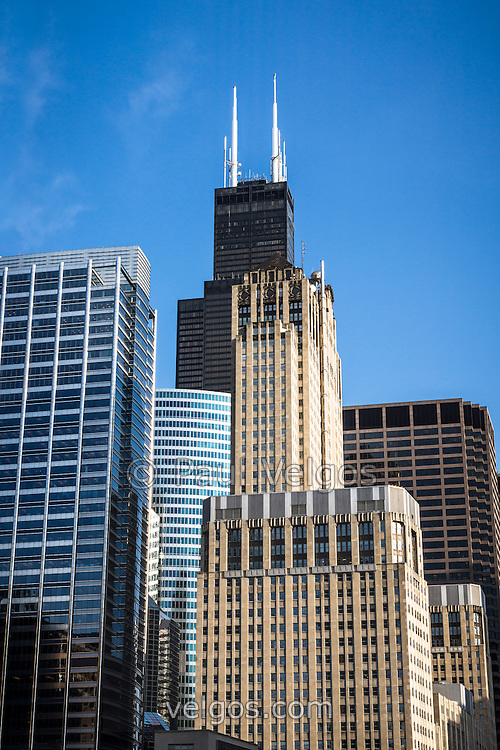 Picture of Chicago downtown city office buildings with Willis Tower (Sears Tower) one of the worlds tallest skyscrapers. Photo is high resolution and was taken in 2012.