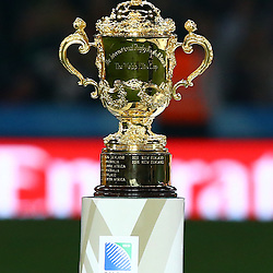 LONDON, ENGLAND - OCTOBER 31: The rugby world cup during the Rugby World Cup Final match between New Zealand vs Australia Final, Twickenham, London on October 31, 2015 in London, England. (Photo by Steve Haag)