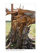 10/4/05:  Hurricane Rita's wind power.