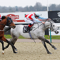 Lingfield 25th March 2013