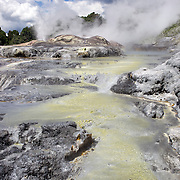 A spectacular geyser at Te Puia, Rotorua. Te Puia is the premier Maori cultural centre in New Zealand - a place of gushing waters, steaming vents, boiling mud pools and spectacular geysers. Te Puia also hosts National Carving and Weaving Schools and  daily maori culture performances including dancing and singing. Rotorua, 9th December 2010 New Zealand.  Photo Tim Clayton.
