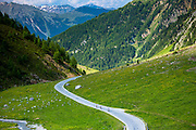 Cyclists on the Umbrail Pass which leads, in the Swiss National Park, from Switzerland to Italy in the Eastern Alps