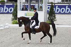 Hughes Gareth (GBR) - DV Stenkjers Nadonna<br /> CHIO Rotterdam 2012<br /> © Hippo Foto - Leanjo de Koster