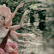 Connecticut Ballet dancers dancing as forest fairies within a magical enchanted forest.