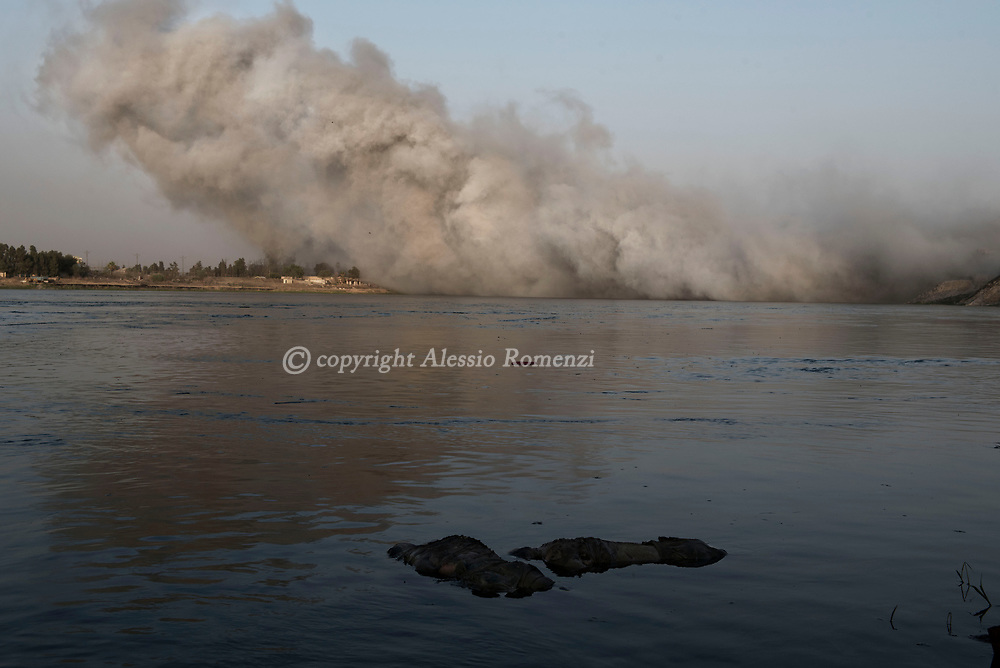 IRAQ, Mosul: Two dead bodies float on the Tigris river while the smoke raised as consequence of an international coalition airstrike is taken by the wind across the river. Alessio Romenzi