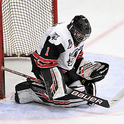 GEORGETOWN, ON - JANUARY 5: Carson Poulin #1 of the Georgetown Raiders makes the save in the first period on January 5, 2019 at Gordon Alcott Memorial Arena in Georgetown, Ontario, Canada.<br /> (Photo by Ken Lamb / OJHL Images)