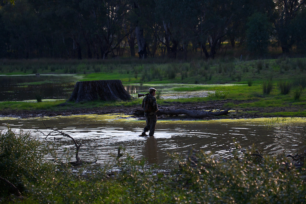 Collin Wood. Duck hunting season opens near Howlong on the Murray River. Pic By Craig Sillitoe CSZ/The Sunday Age 22/3/2011 This photograph can be used for non commercial uses with attribution. Credit: Craig Sillitoe Photography / http://www.csillitoe.com<br /> <br /> It is protected under the Creative Commons Attribution-NonCommercial-ShareAlike 4.0 International License. To view a copy of this license, visit http://creativecommons.org/licenses/by-nc-sa/4.0/.