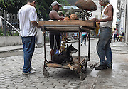 A fruit vendor and his dog. Habana Vieja, Cuba.