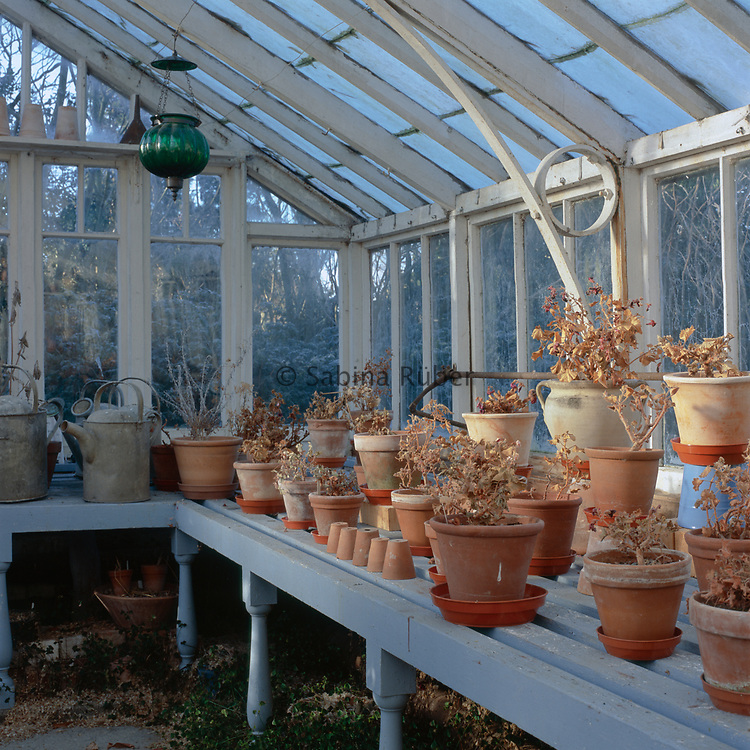 Green house interior display with terracotta pots and vintage galvanised watering  cans. Winter: Bryan's Ground, Herefordshire