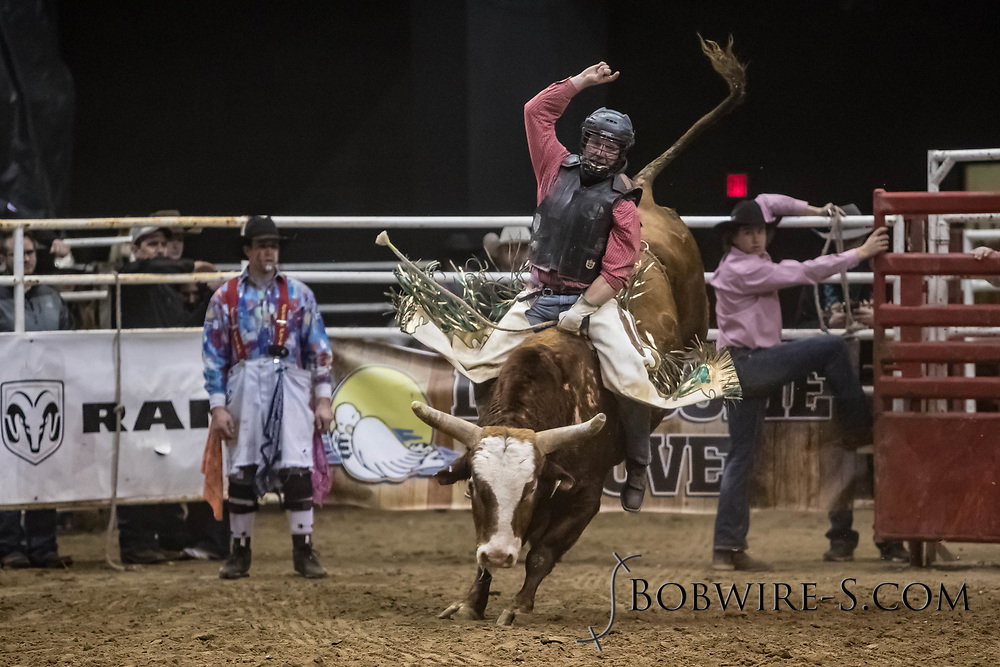 Bull rider Jay Dunford rides a Mosbrucker Rodeo bull during the Bismarck Rodeo on Saturday, Feb. 3, 2018. He scored 79 points on the ride. More photos of each run are available at Bobwire-S.com.