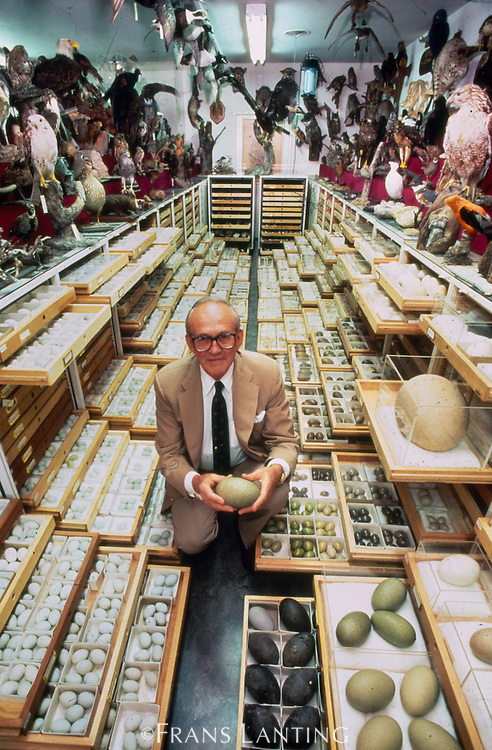 Ed Harrison in the largest bird egg collection in the world, Western Foundation of Vertebrate Zoology, Los Angeles, California