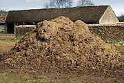 Muck heap on a dairy farm in Sherborne, Gloucestershire, United Kingdom
