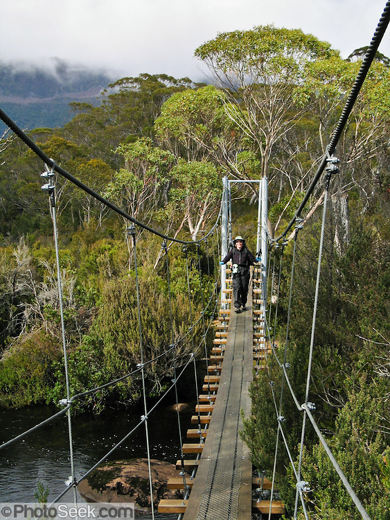 A swing bridge connects bushwalkers along the Overland Track, in Cradle Mountain-Lake St Clair National Park, Tasmania, Australia. The Tasmanian Wilderness was honored as a UNESCO World Heritage Site in 1982, expanded in 1989. The famous Overland Track features mountains, temperate rainforest, wild rivers, alpine plains, abundant birds, and other wildlife.