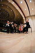 Members of a string quartet practice on stage at the Cartwright Auditorium.