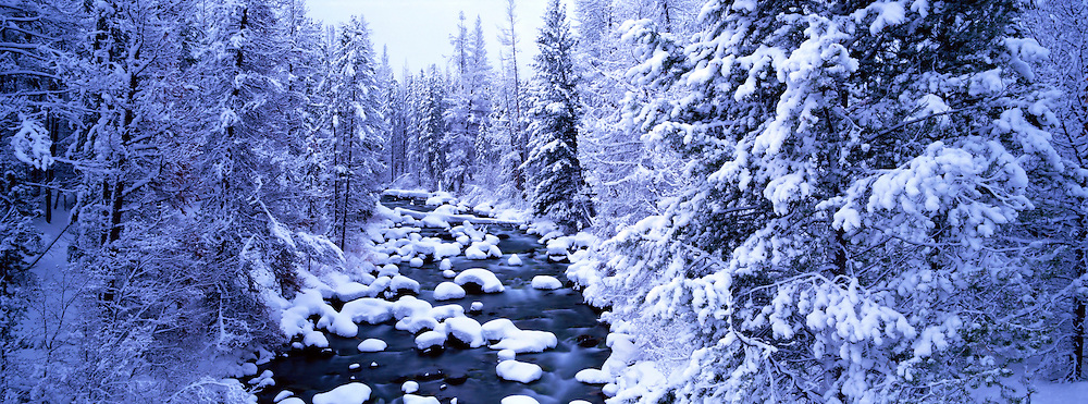 Idaho, Sawtooth National Recreation Area, Winter, panorama of fresh snow covering the trees along Redfish Creek near Stanley