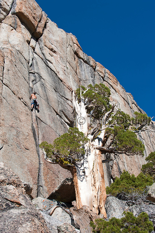 "Brad Parker climbing ""For Whom the Bell Tolls"" (5.10c) at Chipmonk Flat, Sonora Pass, Sierra Nevada Mountains, California"