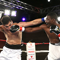 Omar Albanil (left) fights Quincy Brown during a Telemundo boxing match at the A La Carte Pavilion  on Friday, August 1, 2014 in Tampa, Florida. (AP Photo/Alex Menendez)